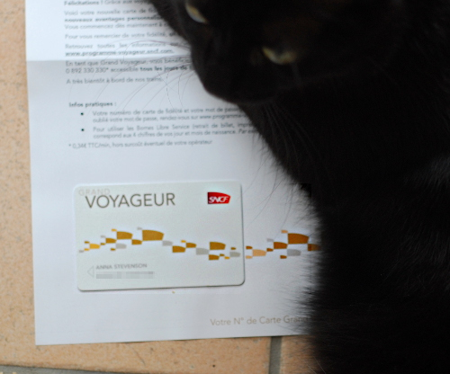 Grand Voyageur card and curious Susu